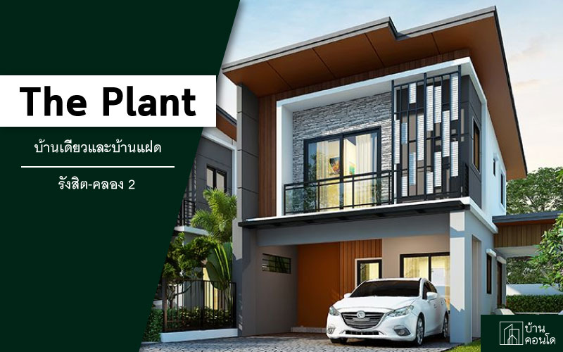 the plant รังสิต
