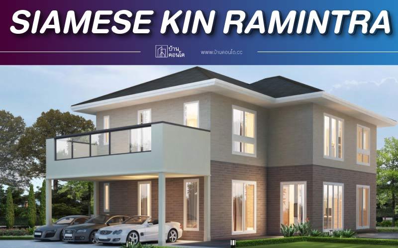 ไซมิส คิน รามอินทรา Siamese KIN Ramintra