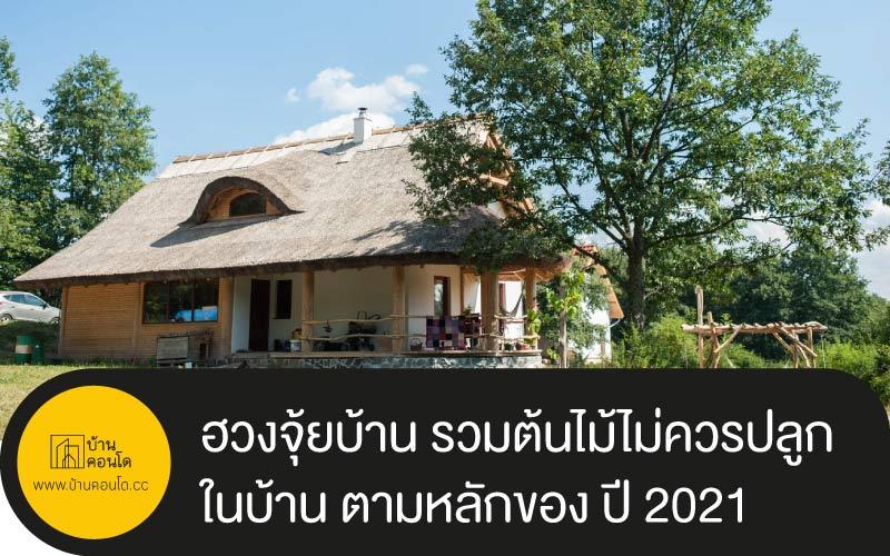 ฮวงจุ้ยบ้าน รวมต้นไม้ไม่ควรปลูกในบ้าน ตามหลักของ ปี 2021