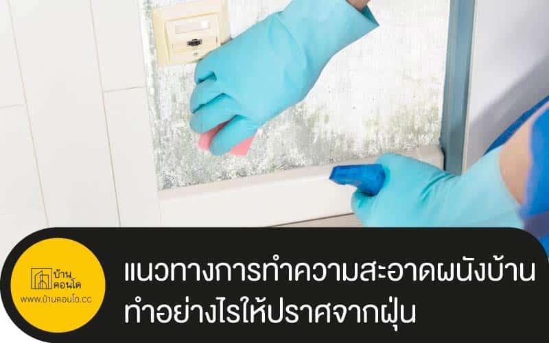 แนวทางการทำความสะอาดผนังบ้าน ทำอย่างไรให้ปราศจากฝุ่น